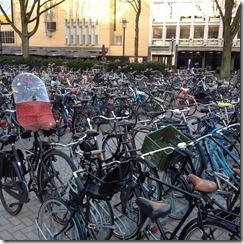 הרבה אופניים