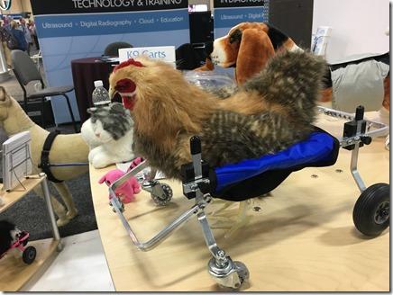 כסא גלגלים תרנגולת